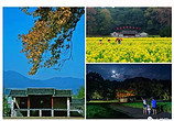 旅游日 你必须要珍藏的50幅上杭美图!