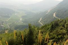 柳林乡·望江山