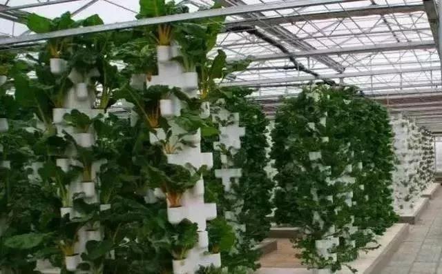 原来这就是现代农业,太震撼了!
