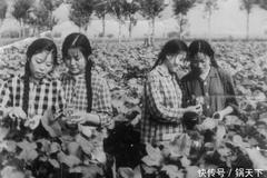 一组女知青珍贵老照片:养猪、喂羊、能种田,长相美丽又能干