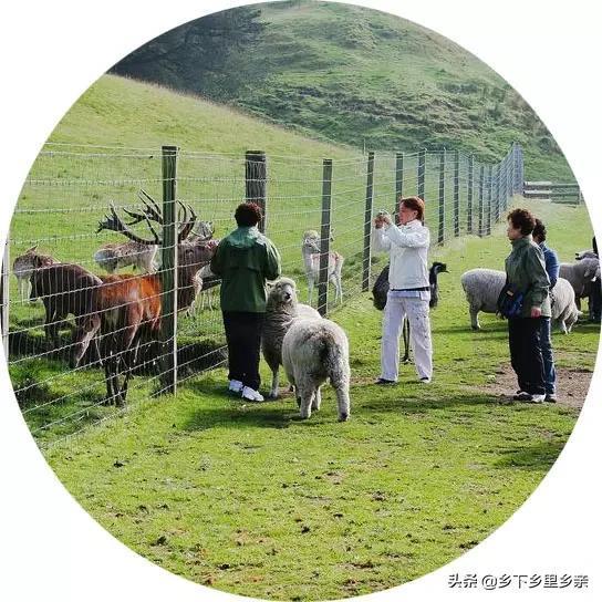 休闲养生农业时代已经来临!