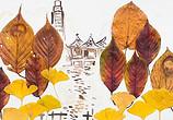 秋季树叶制作