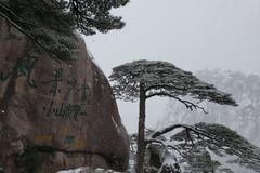 美图欣赏雪景漂亮