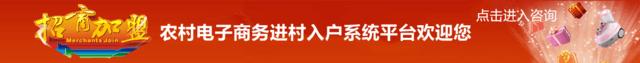 农村电子商务进村入户系统平台 .png